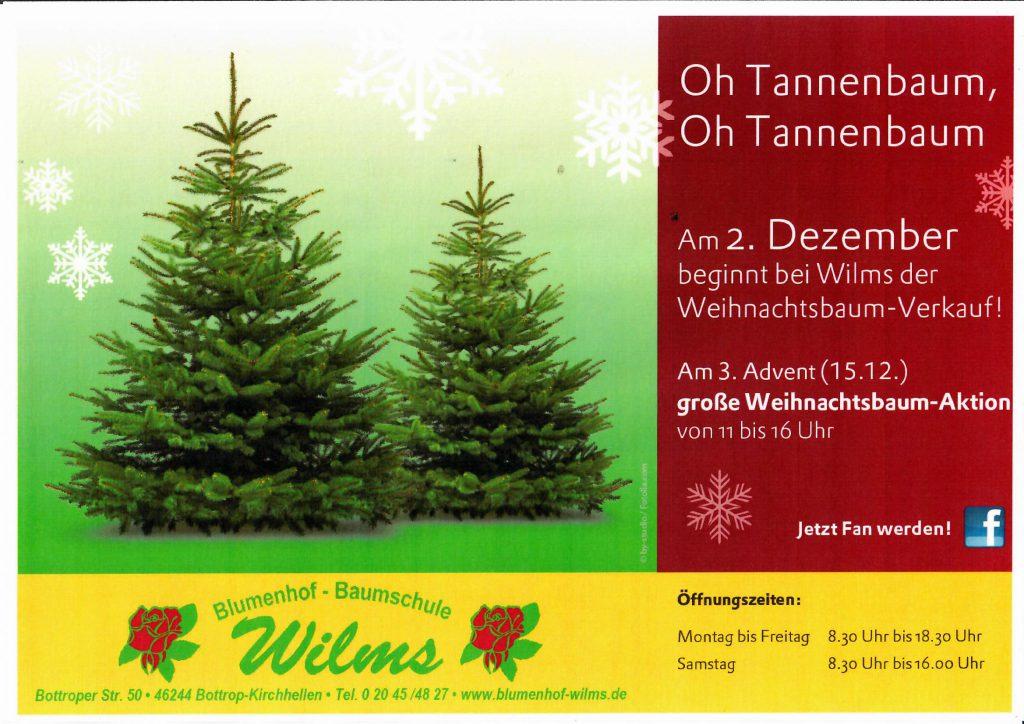 Am 2. Dezember beginnt der Weihnachtsbaum – Verkauf